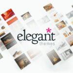 elegant-themes-review